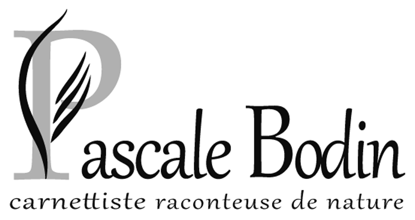 Pascale BODIN | Carnettiste raconteuse de nature